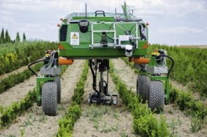 Fighting weeds: Can we reduce, or even eliminate, herbicide use through robotics and AI?