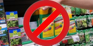 Viewpoint: Naïve calls for glyphosate ban threaten higher food prices, resurgence of more toxic pesticides