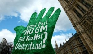 Most Europeans fear biotech crops? New survey busts the popular anti-GMO myth