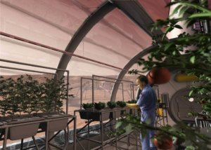 How genetically engineered crops can help us colonize space