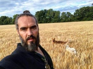 Biotech colonialism? Comedian Russell Brand claims Bill Gates is 'buying up stolen land' to 'take over the global food system'. Here's what he got wrong
