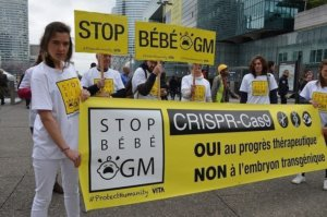 Anti-GMO groups rush to block EU farmer access to gene-edited crops in the name of sustainable farming