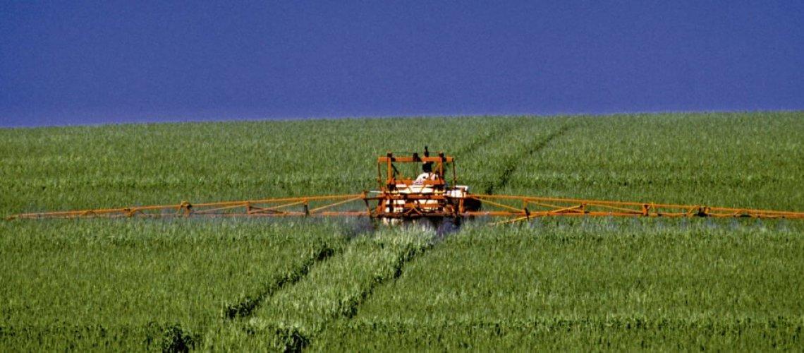 capa-agrotóxicos-px-1024x419.jpg